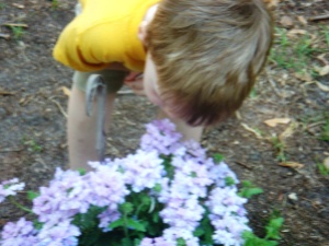 My Son Smelling the Flowers