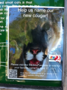 Name the Cougar Ad with QR Code